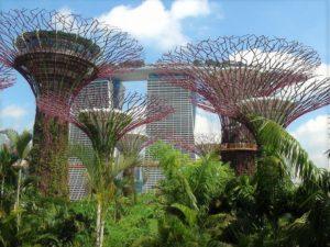 シンガポール 観光 ガーデンバイザベイとマリーナベイサンズ
