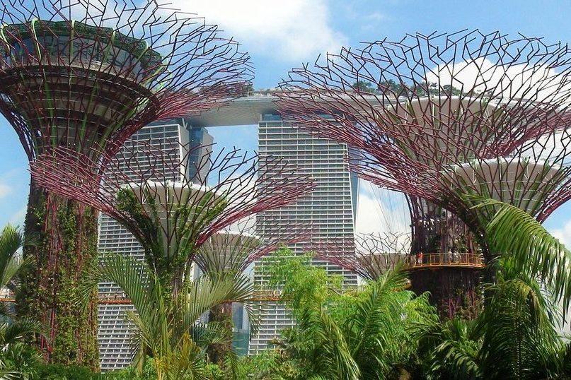 シンガポールの観光スポット ガーデンバイザベイとマリーナベイサンズのコラボ