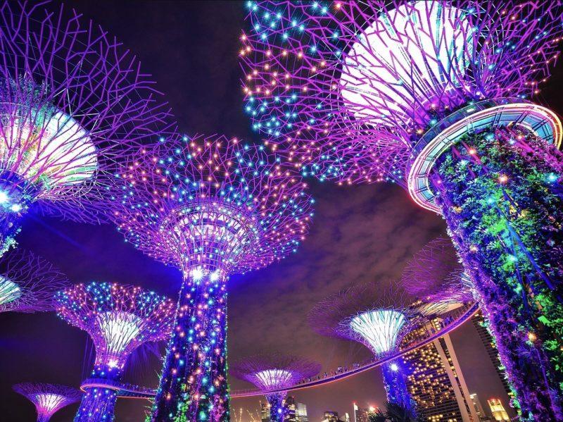 シンガポールの観光スポット ガーデンバイザベイのライトアップショー「ガーデンラプソディ」