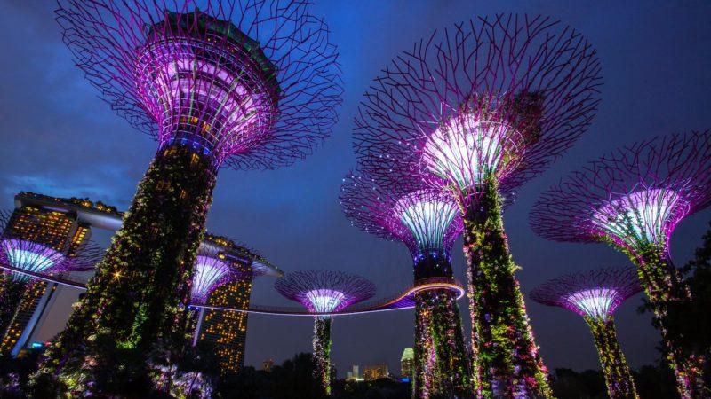 シンガポールの観光スポット ガーデンラプソディ 幻想的な光のショー