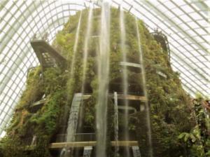 シンガポール 観光 ガーデンバイザベイのドーム型植物園