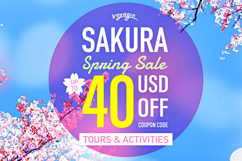 Voyagin sakura spring sale