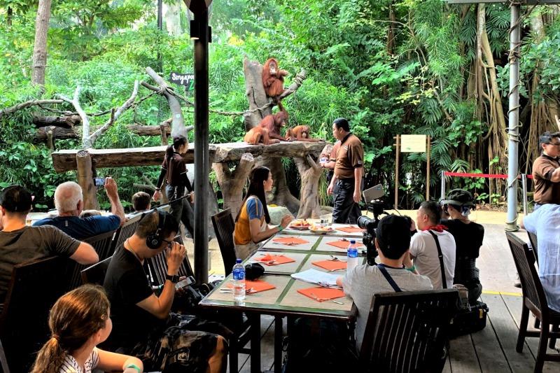 シンガポール動物園 取材班