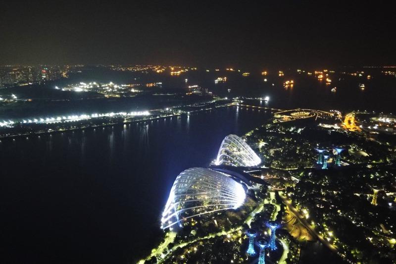 シンガポール湾と植物園の夜景