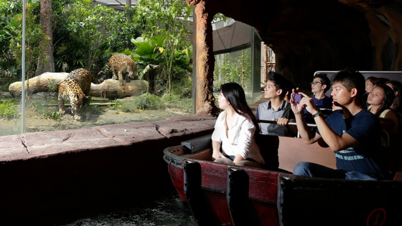 リバーサファリ アマゾンリバークエストの乗り物から見るジャガー