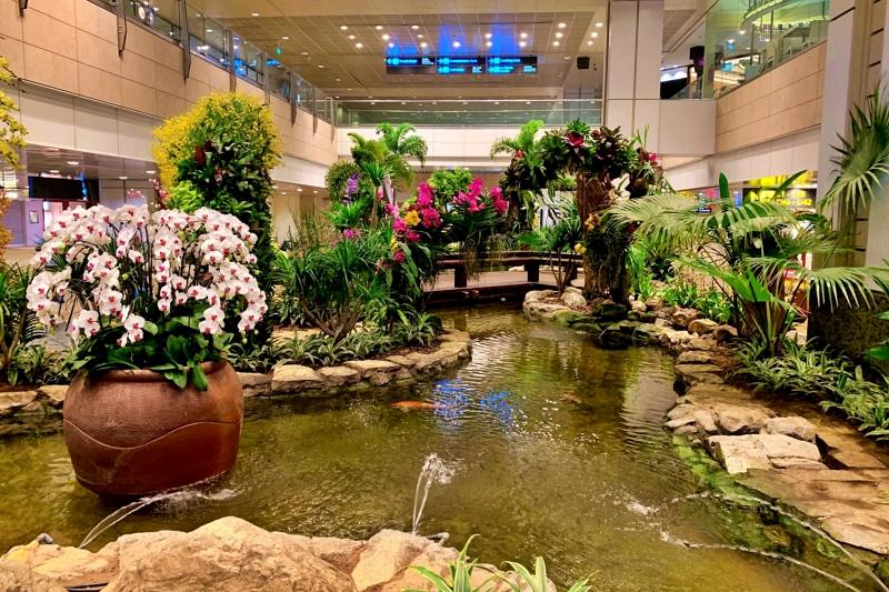 singapore changi airport terminal 2 Orchid Garden
