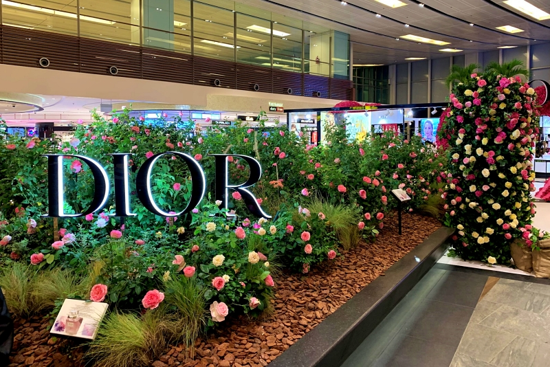 singapore changi airport termnal 1 PIAZZA GARDEN