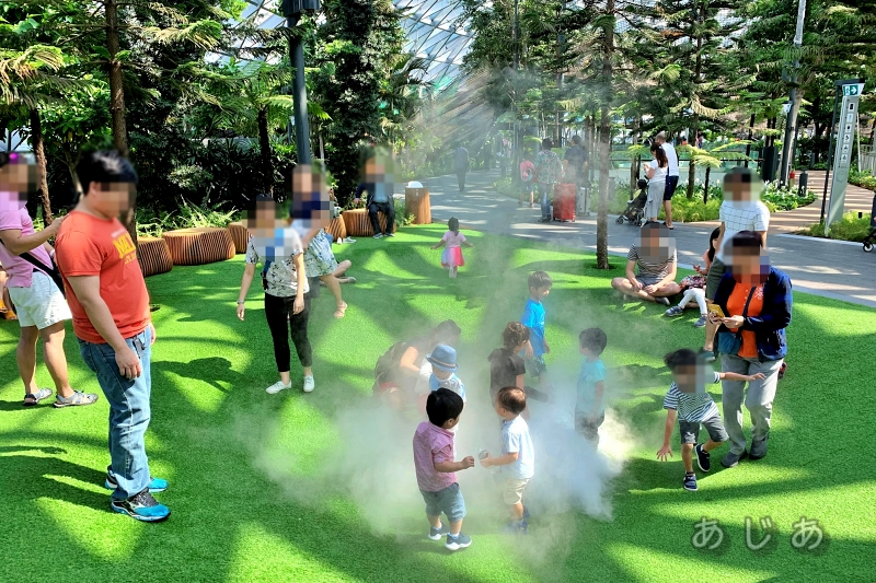 シンガポール空港ジュエルのフォギーボウルで遊ぶ親子