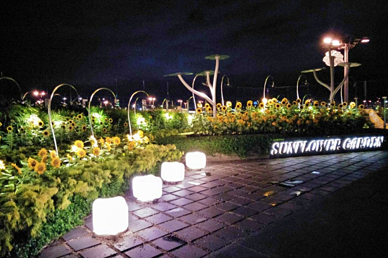 singapore changi airport terminal 2  Sunflower Garden